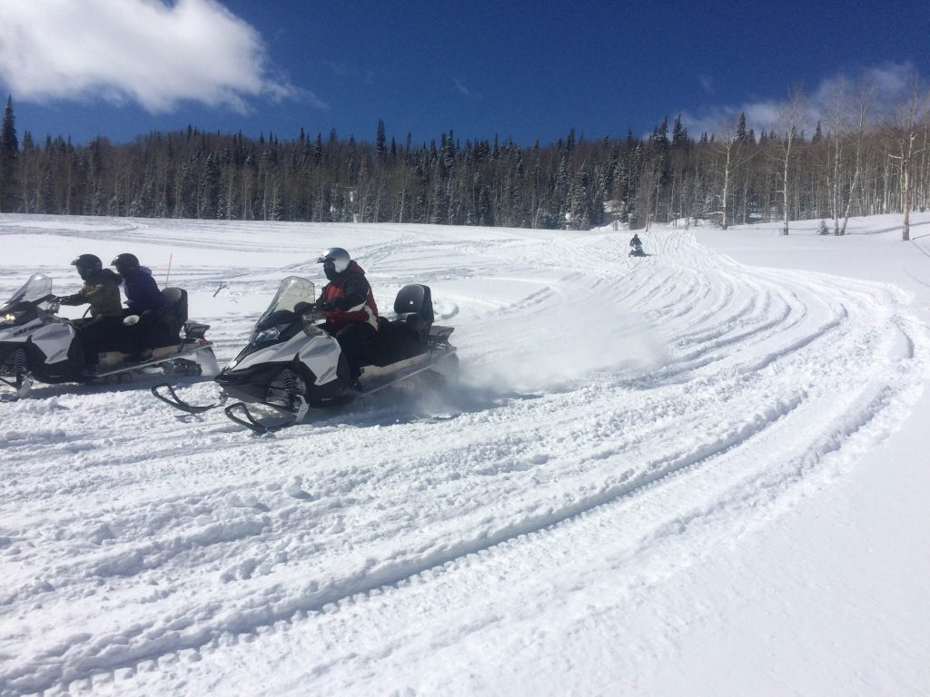 Ski-Doo Snowmobiles offer top speed and agility