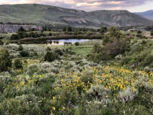 Stunning Colorado Views during our guided trips