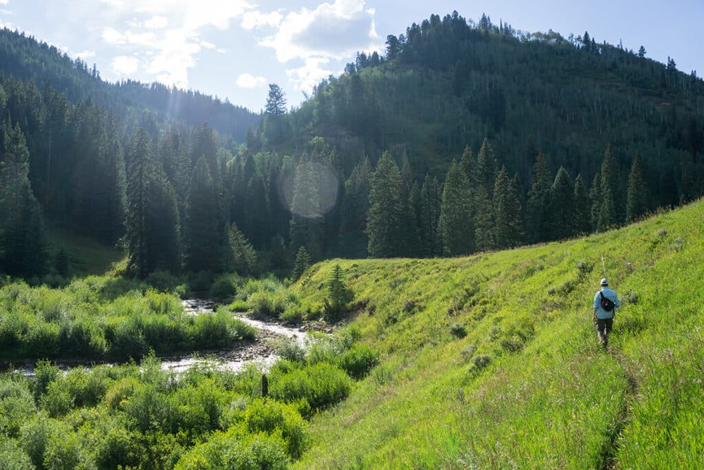 The Piney River near Vail, Colorado